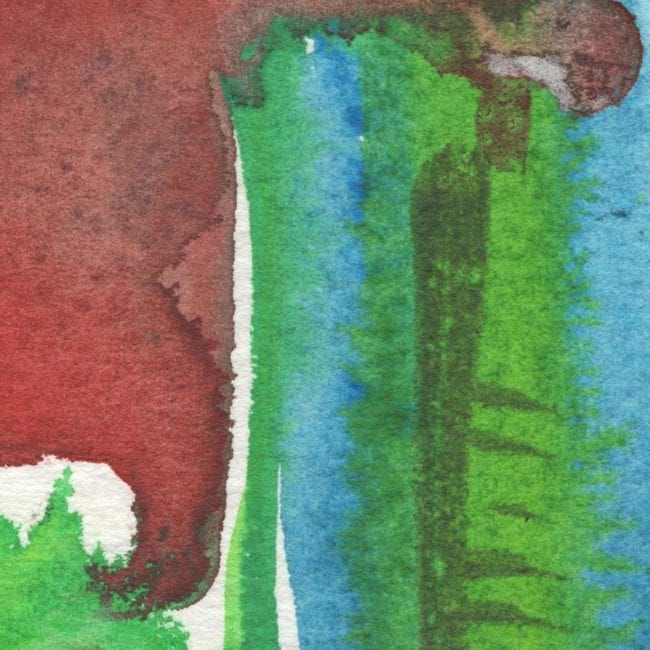 red, green, and blue watercolor detail