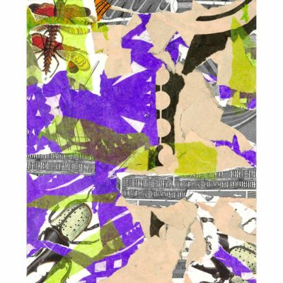 purple, green, and tan mixed media collage with images of beetles and other insects