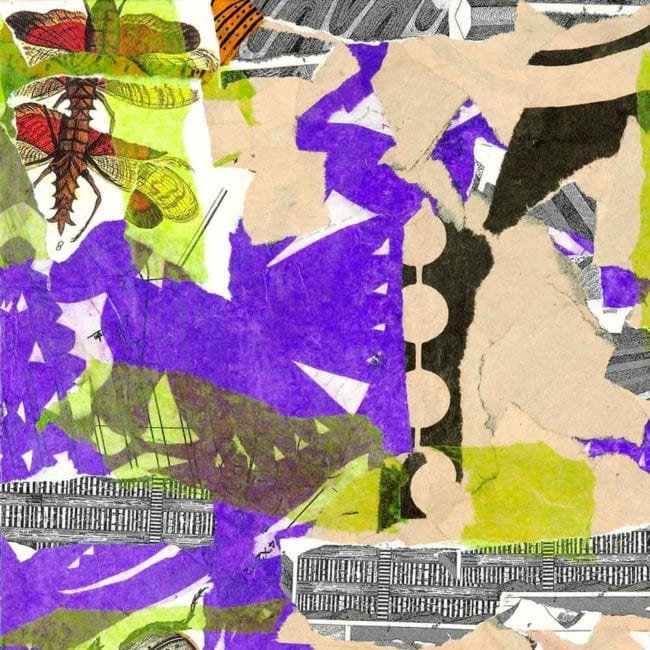 close up of a mixed media collage with torn purple, green, and tan paper and a scientific illustration of a winged insect