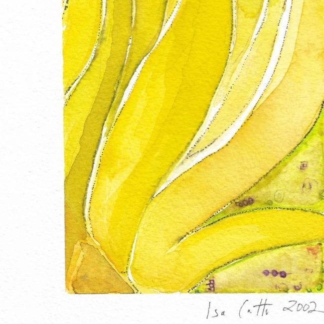close up of the leaf study watercolor painting with cool yellow sea grape leaves and the artist's signature at the bottom under the paint