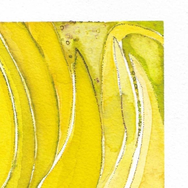 close up of the leaf study watercolor painting showing the tips of cool yellow sea grape leaves
