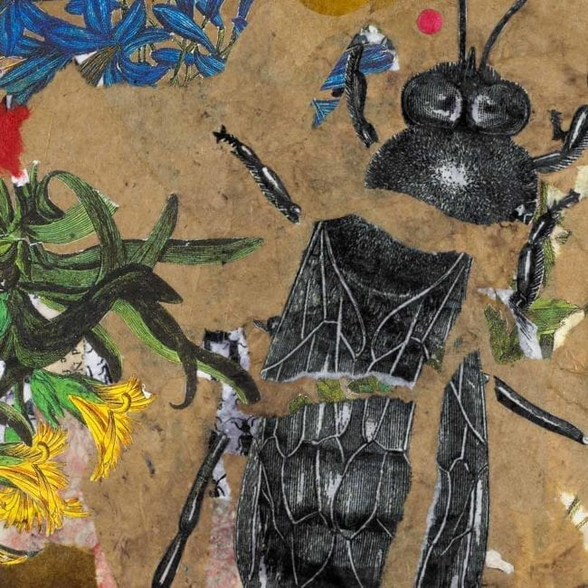 close up of a mixed-media piece with torn brown paper, colorful botanical illustrations, and a torn black and white illustration of a bee