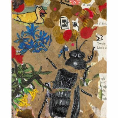 mixed-media piece with torn brown and red paper, colorful botanical illustrations, typography, and a torn black and white illustration of a bee