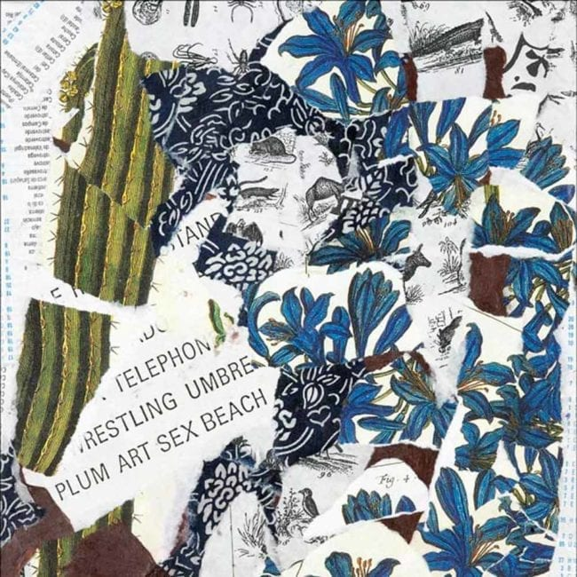 close up of a mixed media with blue floral botanical illustrations, a torn illustration of a green cactus, and torn typography with the words plum art sex beach