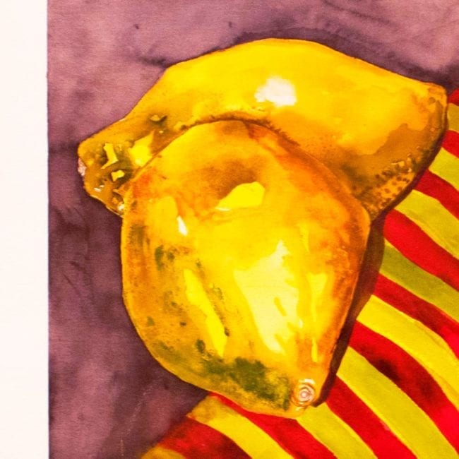 close up of the watercolor still life painting showing the two yellow quince fruits on a yellow and red striped fabric and purple surface