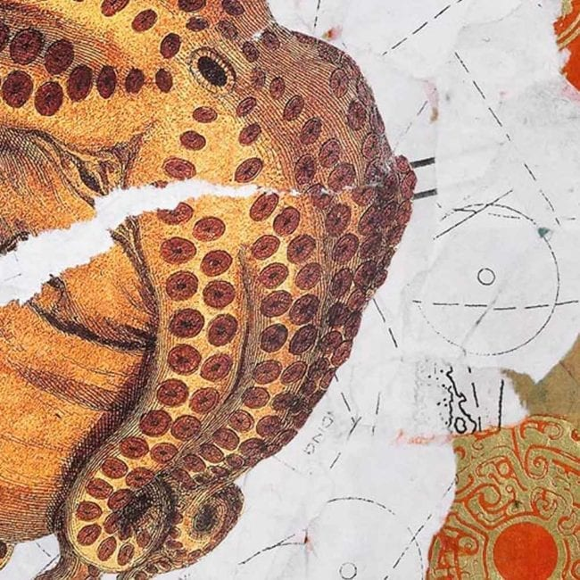 close up of the mixed media collage with a background of torn tan and white paper showing a closer detail of the octopus illustration