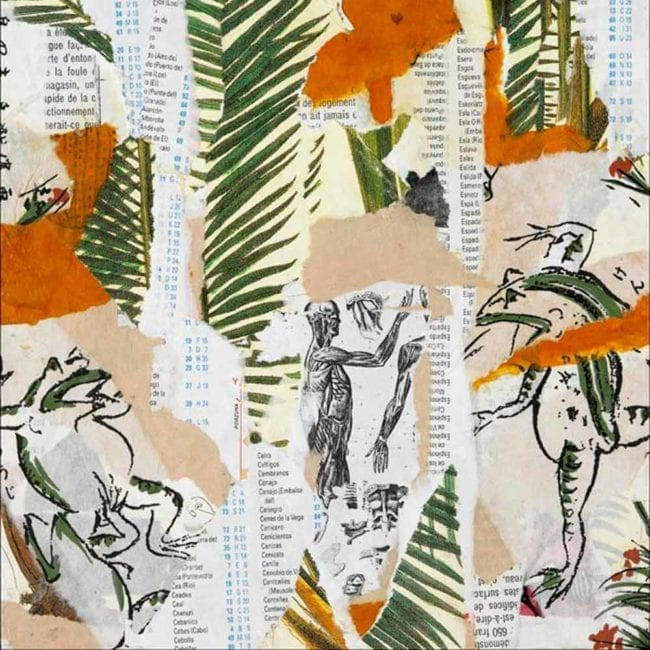 close up of the original mixed media collage with torn beige, orange, and white with typography paper in the background as well as images of green palm leaves, a black and white anatomical illustration of the human muscle system, and japanese frog illustrations