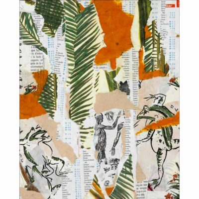 original mixed media collage with torn beige, orange, and white with typography paper in the background as well as images of green palm leaves, a black and white anatomical illustration of the human muscle system, and japanese frog illustrations