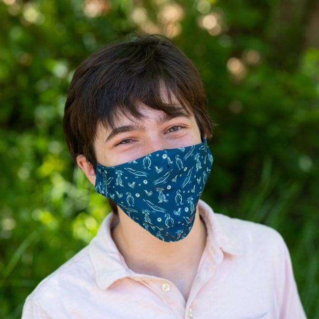 young man wearing mask with blue background and light green playful illustrated bird pattern
