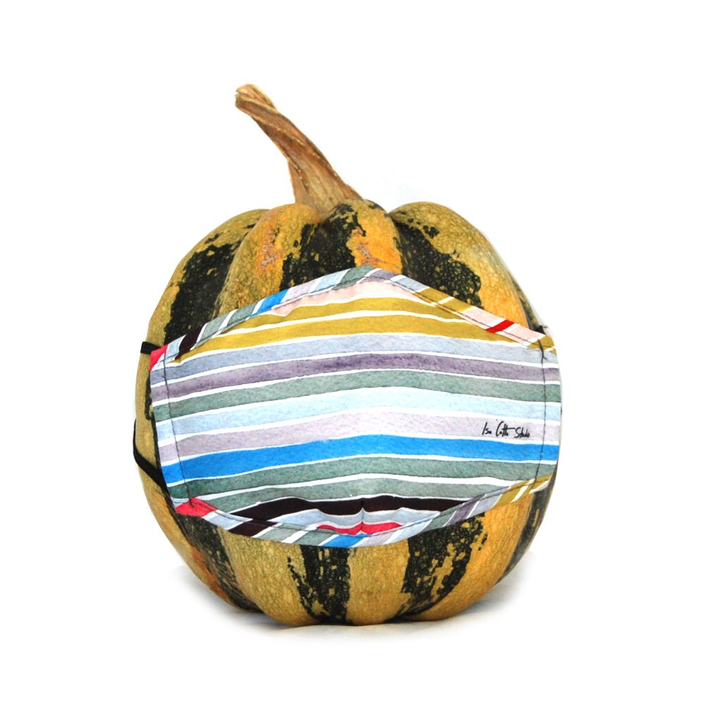 Horizontal pastel stripes create this face mask design that is displayed on a fall gourd