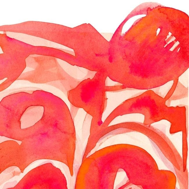 detail of red and pink abstracted poppies