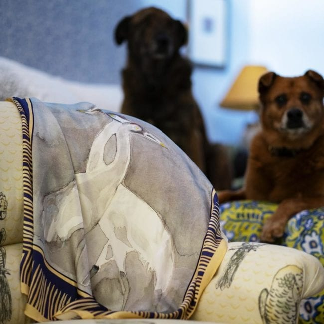 silk crane scarf draped over lounge chair in bedroom setting with bed in background two dogs sitting on bed in background