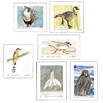 Six prints of watercolor paintings of different endangered birds