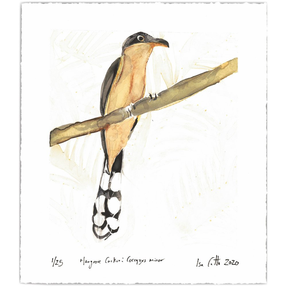 mangrove cuckoo digital print with signatures