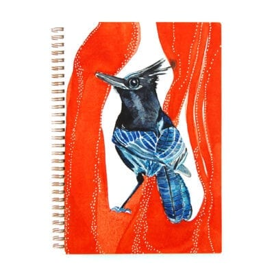 wire bound notebook cover with watercolor of a stellar jay set against a dramatic red background