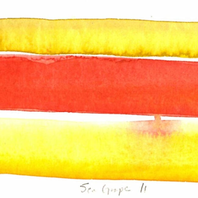 """Up-close of a yellow and red striped painting featuring the title """"Sea Grape II"""""""