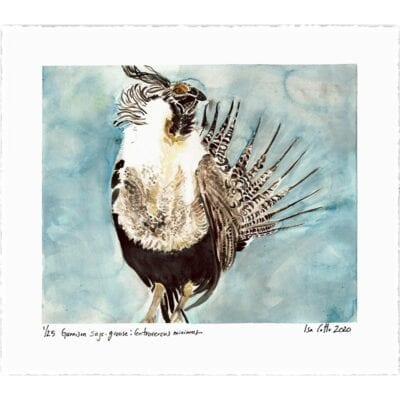 a watercolor painting of a gunnison sage grouse with brown feathers and yellow accents with a blue gray sky in the background