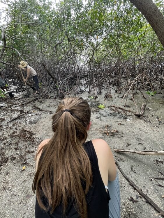 girl with pony tail kneeling in front of a mangrove forest while a woman in a hat plants a mangrove