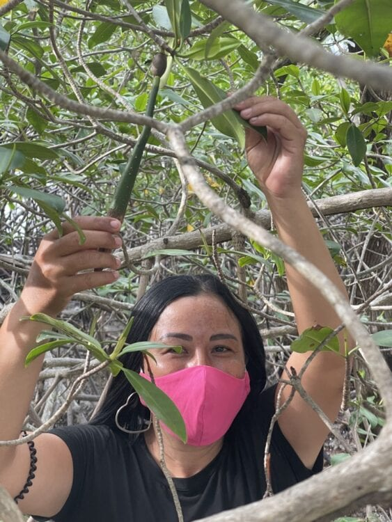 a woman with a pink mask showing a long green seed of a mangrove tree