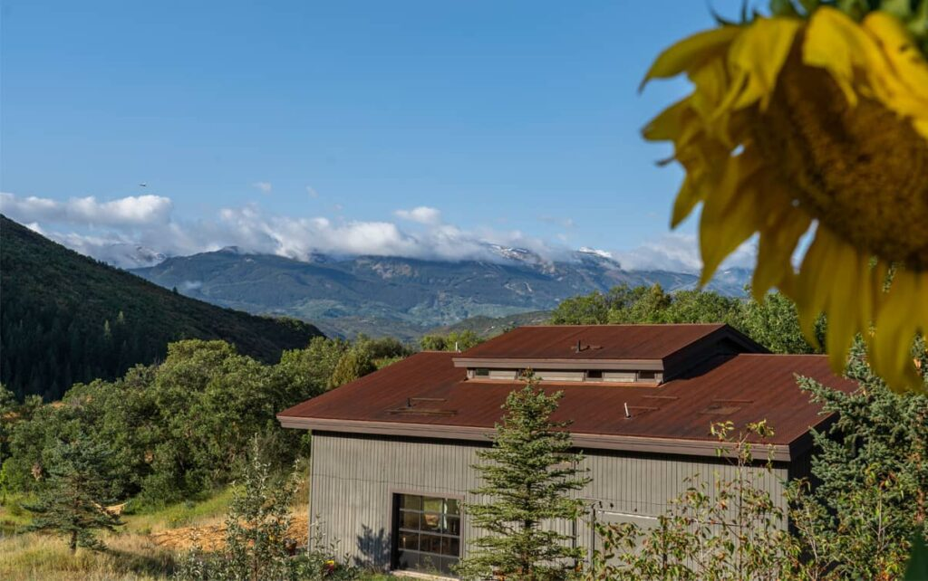 a photo looking down at a barn with mountains way in the distance and a sunflower nearby
